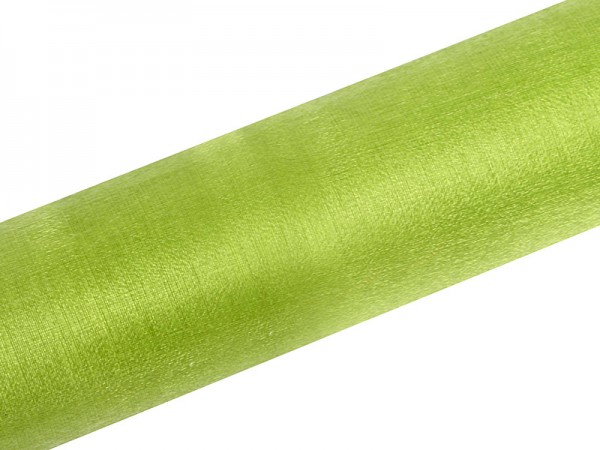 Paris Dekorace Organza sněžná zelená, 16cm/9m