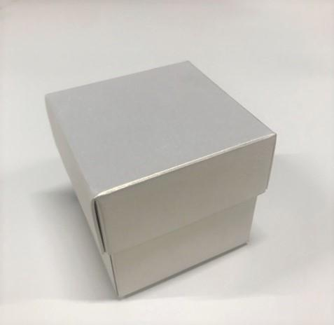 Paris Dekorace Stříbrná krabička s víčkem