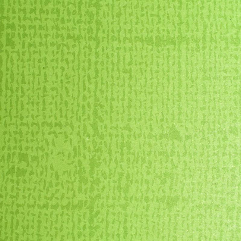 Paris Dekorace Papírová prostírka 35*45cm, list. zeleň, 250 ks