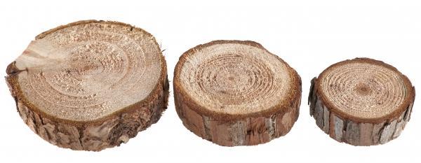 Paris Dekorace Dřevěná přírodní kolečka, 250g